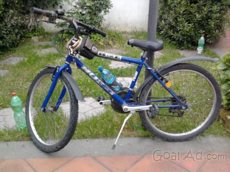 Mountain Bike Nuzzi Blaster Alluminio Vendo Cerca Compra Vendi