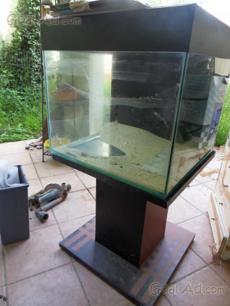 Acquario marino completo tutto informazioni chiamatemi for Cerco acquario per tartarughe usato