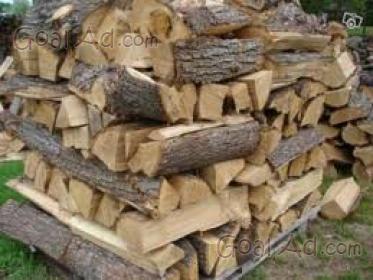 Legna ardere vende robinia prezzo quintale cerca compra for Legna da ardere prezzi
