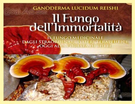 Trattamento di danni fungosi di ununghia