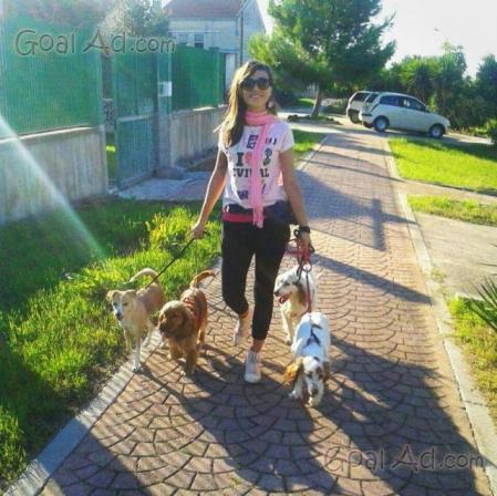 Cercasi sitter cerco porti fuori cane cerca compra for Cerco dog sitter