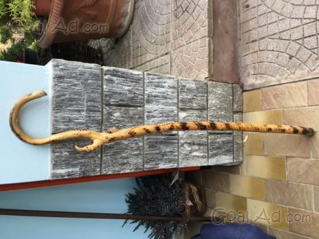 Bastoni passeggio legno corniolo vendo lavorati cerca for Eminflex 79 euro